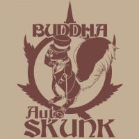 BUDDHA AUTO SKUNK BUDDHA SEEDS CLASSICS