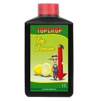 TOP LEMON TOP CROP-21