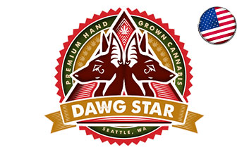 dwag star seeds