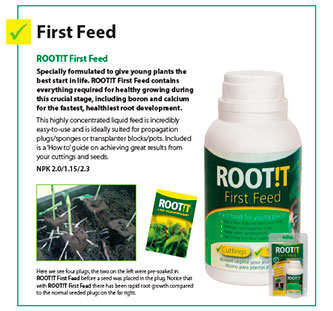 First feed Root it