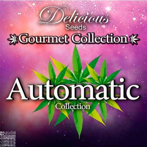 GOURMET AUTO # 1 (COLECCIONES) DELICIOUS SEEDS