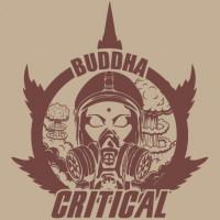 BUDDHA CRITICAL BUDDHA SEEDS CLASSICS