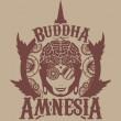 BUDDHA AMNESIA BUDDHA SEEDS CLASSICS