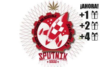 sputnik seeds