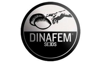 Dinafem autofloreciente